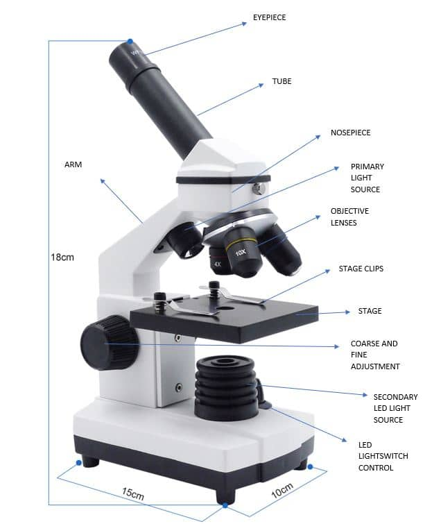 Introduction to Microscopic Work