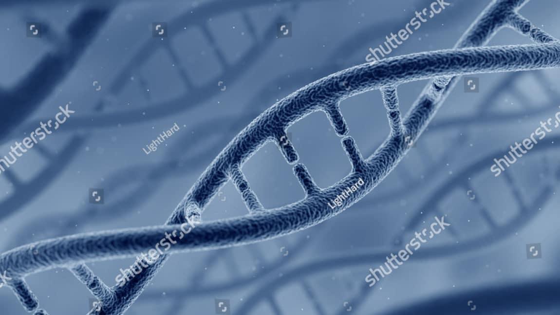 DNA and Genetics – DNA Extraction
