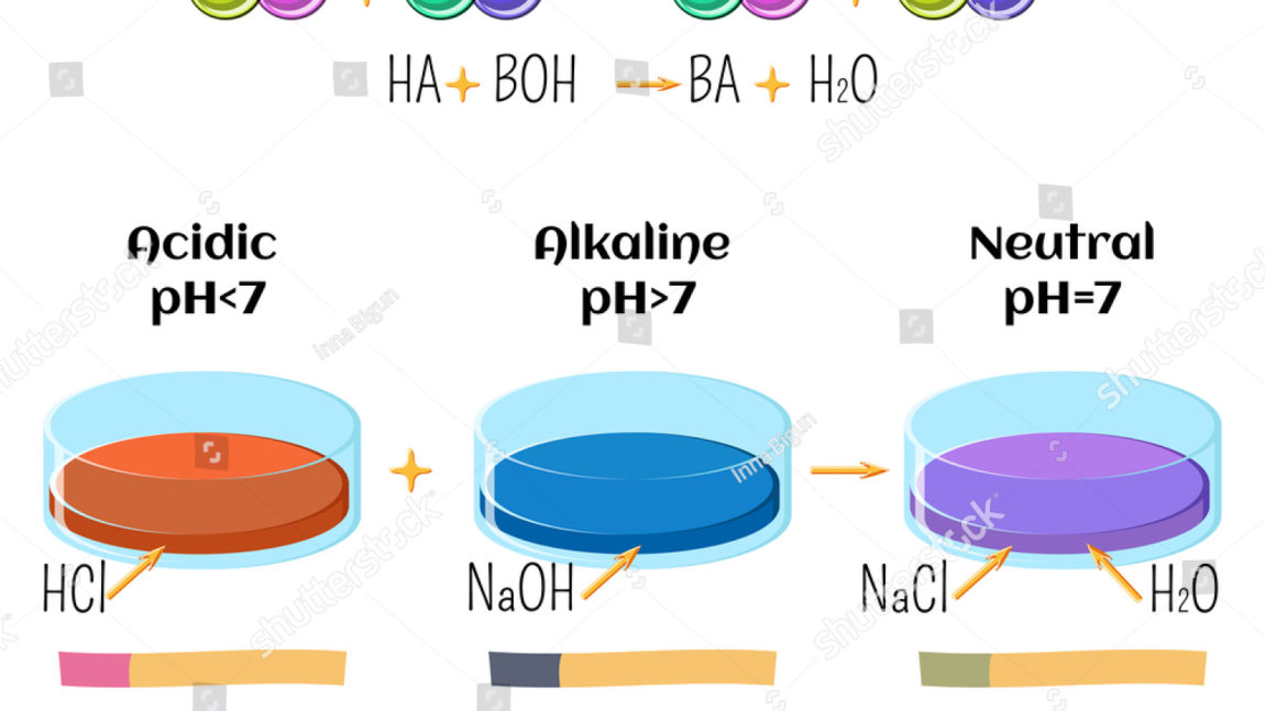 Reactions of Acids and Bases: Neutralization and pH
